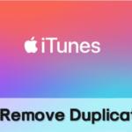 Cómo encontrar y eliminar archivos duplicados de iTunes