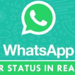 Cómo saber el estado del servidor de WhatsApp en tiempo real