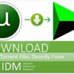 Cómo descargar archivos de torrent usando IDM con velocidad máxima 2019