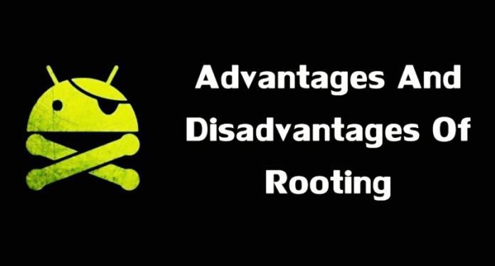 5 Ventajas y desventajas que debe saber antes de echar raíces